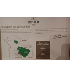 Forest Quersus